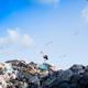 garbage truck unloading - PhotoDune Item for Sale