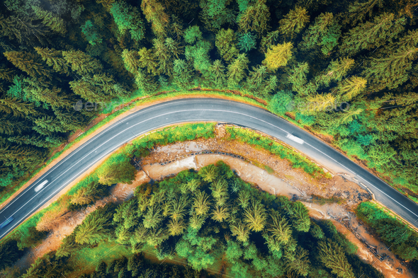 Aerial view of road in beautiful green forest at sunset in autumn - Stock Photo - Images