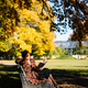redhead woman in plaid coat and black beret reading book on bench in autumn park at sunny day - PhotoDune Item for Sale