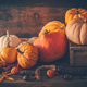 Happy thanksgiving - still life with different pumpkins and autumn leaves - PhotoDune Item for Sale