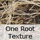 One Intricate Texture of Roots - GraphicRiver Item for Sale