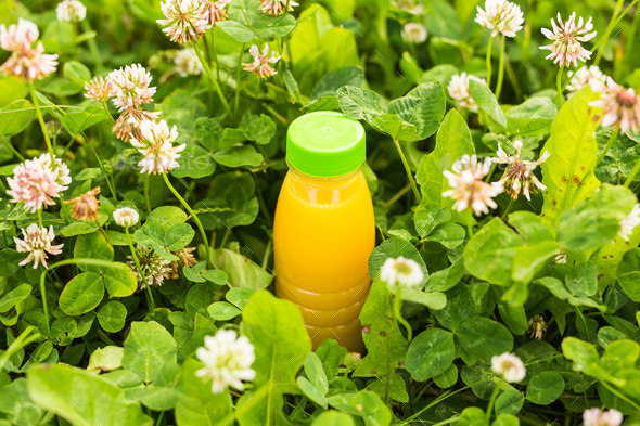 Diet, detox and healthy lifestyle concept. Fresh juice in bottle on a green grass - Stock Photo - Images