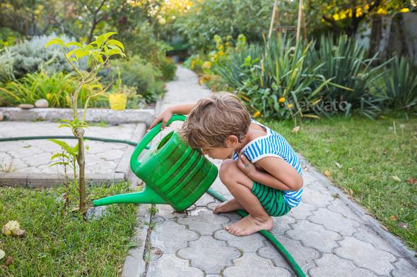 Little boy in garden - Stock Photo - Images