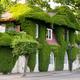 overgrown house - PhotoDune Item for Sale