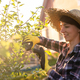 Side view of focused young caucasian woman gardener cuts unnecessary branches and leaves from tree - PhotoDune Item for Sale