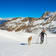 Girl makes ski mountaineering with dog. - PhotoDune Item for Sale
