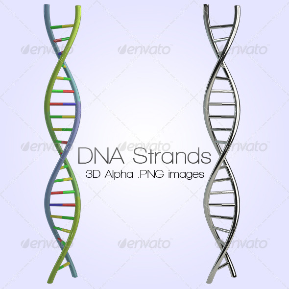 DNA - Miscellaneous 3D Renders