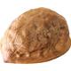 Walnut isolated on white background - PhotoDune Item for Sale
