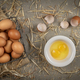 Basket of fresh brown eggs - PhotoDune Item for Sale