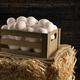 Crate of fresh eggs in barn - PhotoDune Item for Sale