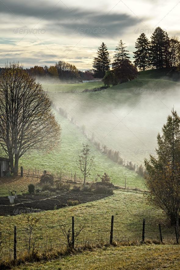 autumn scenery - Stock Photo - Images