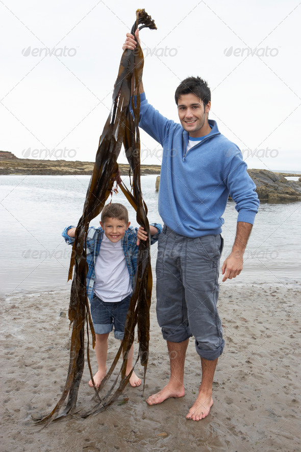 Father and son on beach - Stock Photo - Images