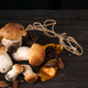 Large and small Forest mushrooms on a dark background . Vegetarian food - PhotoDune Item for Sale