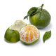 Green mandarin and a peeled one on white background close up - PhotoDune Item for Sale