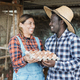 Multiracial farmer people holding fresh organic eggs inside henhouse - PhotoDune Item for Sale