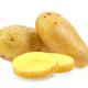 potato on white background - PhotoDune Item for Sale