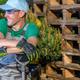 Happy Smiling Caucasian Gardener - PhotoDune Item for Sale