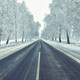 Rural frosted icy road among trees after snowstorm wintertime - PhotoDune Item for Sale