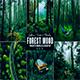 Forest Photoshop Action & Lightrom Presets