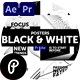 Posters Black & White - VideoHive Item for Sale