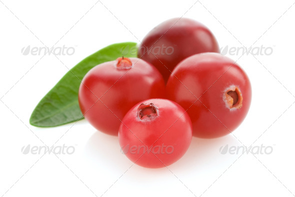 ripe cranberry on white - Stock Photo - Images