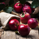 Red apples with drops on vintage wooden background, rustic style, selective focus - PhotoDune Item for Sale