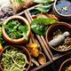 Healing herbs,herbal medicine - PhotoDune Item for Sale