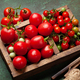 Fresh tomatoes and cherry tomatoes in box - PhotoDune Item for Sale