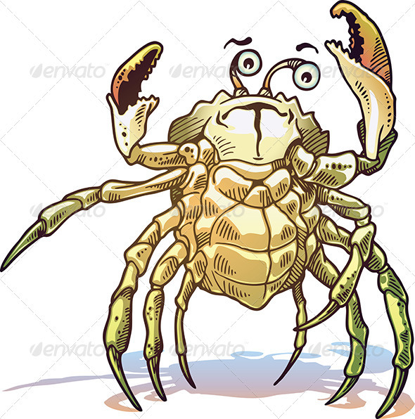 Sea Crab - Characters Vectors