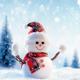 Throwing Snowballs 3