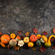 Various decorative pumpkins and dry leaves - PhotoDune Item for Sale