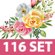 Set of elements from Watercolor clip art collection of bouquets of roses plants and letters vol. 4