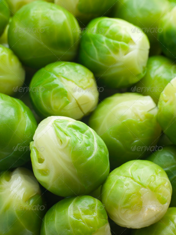 Brussel Sprouts - Stock Photo - Images