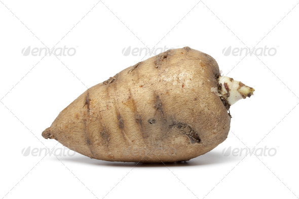 Whole single Turnip-rooted chervil - Stock Photo - Images
