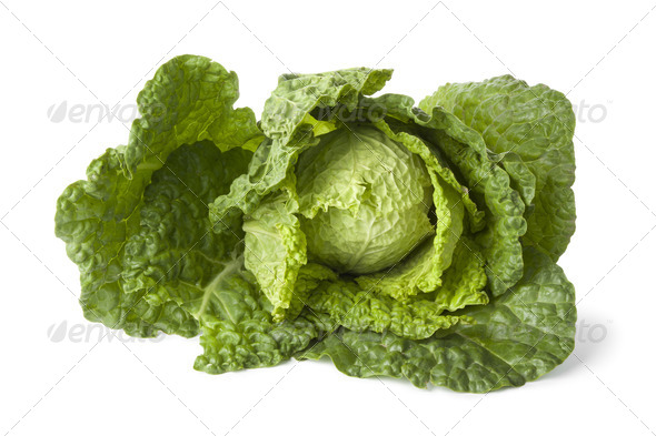 Savoy cabbage - Stock Photo - Images
