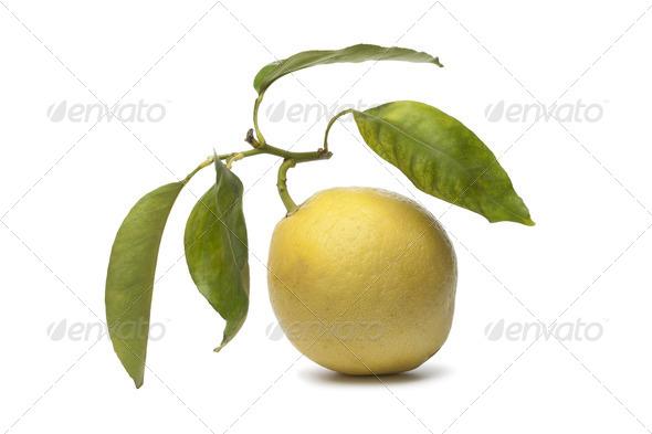 Citrus Medica fruit - Stock Photo - Images
