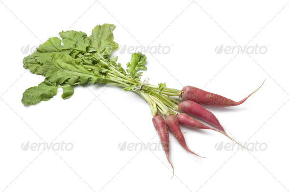 Fresh red radish - Stock Photo - Images