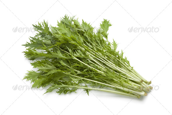 Bunch of fresh Mizuna leaves - Stock Photo - Images