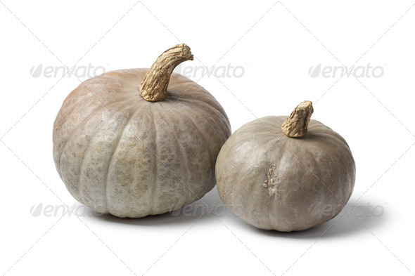 Two grey pumpkins - Stock Photo - Images