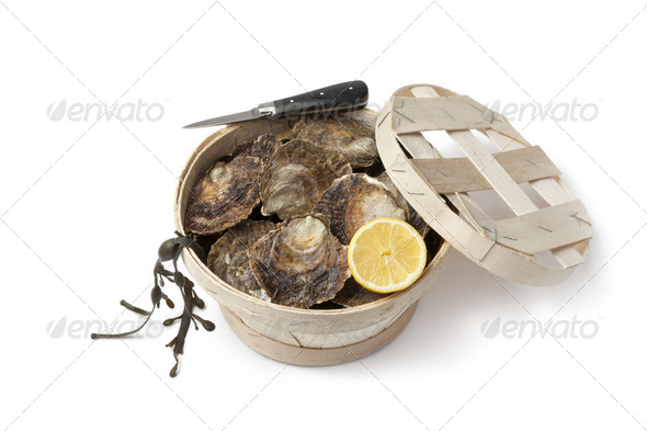 Fresh European flat oysters in a basket - Stock Photo - Images