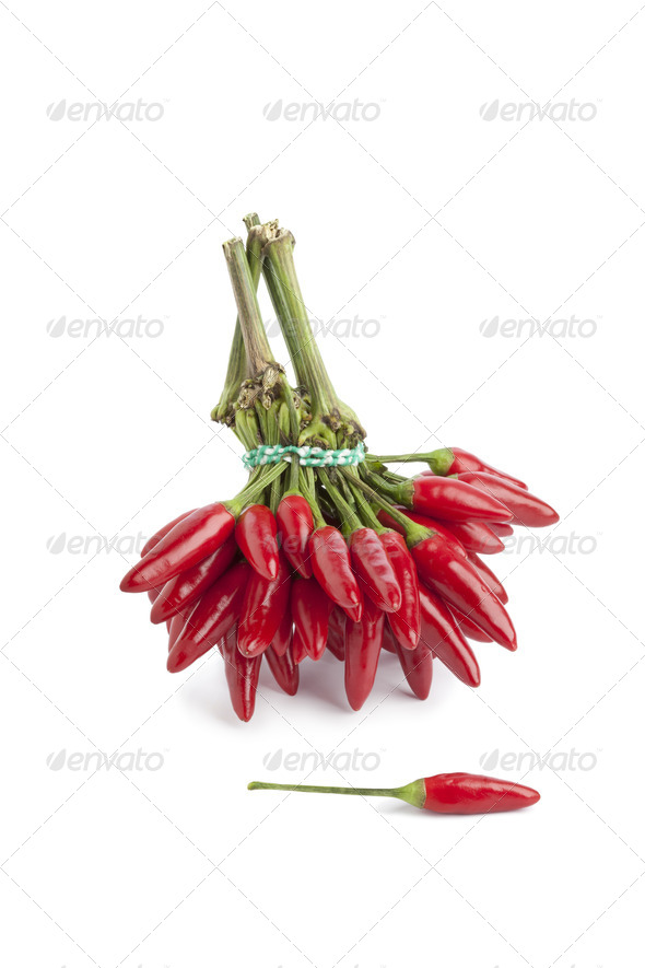 Bunch of fresh tabasco peppers - Stock Photo - Images