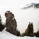 Tatra chamois climbing on mountains in winter mist - PhotoDune Item for Sale