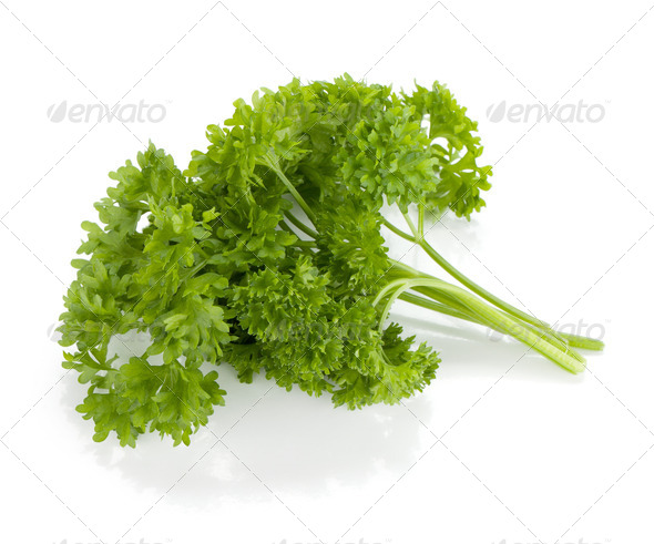 Bunch of fresh green curly parsley - Stock Photo - Images