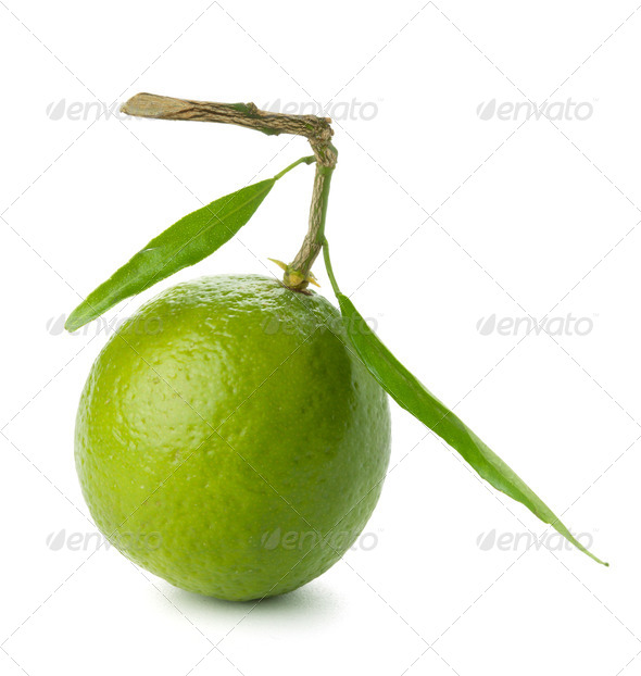 Fresh lime with green leafs - Stock Photo - Images