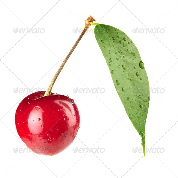 Fresh cherry - Stock Photo - Images