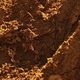 Goa, India. Anthill Of Termite Among Forest In Summer Sunny Day. Zoom Out - PhotoDune Item for Sale
