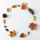 Seasonal autumn or fall decorative frame of leaves and cones - PhotoDune Item for Sale