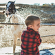 Cute child washing horse outdoor at ranch - Animal love and care - PhotoDune Item for Sale