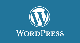 Best Wordpress Themes that make you very happy designer and coder!
