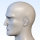 Head base mesh - 3DOcean Item for Sale